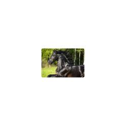 Ohrievač s ventilátorom otočný FK1/O